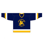 Three-Color Hockey Jersey
